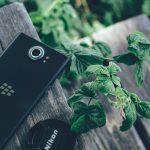 Black Blackberry + Nikon Lens Cover